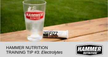 Hammer Nutrition Training Tip 3 Electrolytes