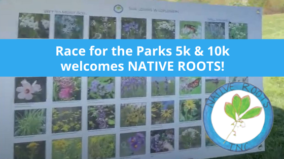 Race for the Parks 5k & 10k welcomes Native Roots
